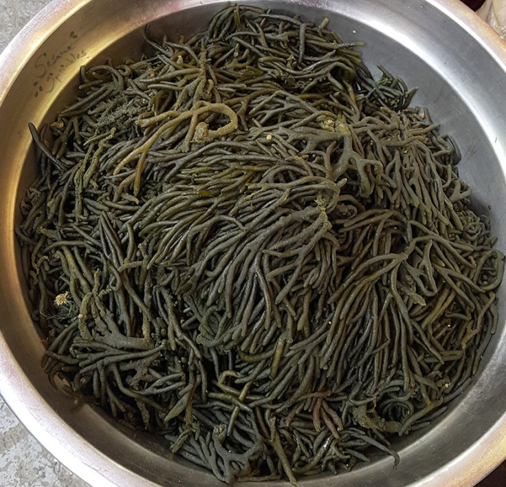 Cheonggak (청각) at a market in Seoul.